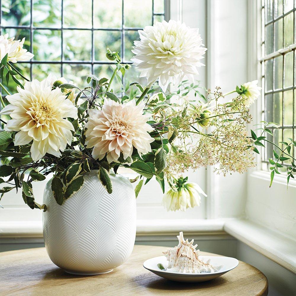 White Folia