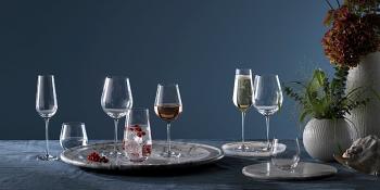 Globe Champagne Flute (Set of 2)