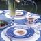 Sarah's Garden Plate 20cm Blue
